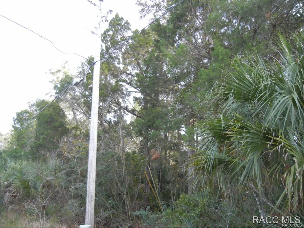6214 S Hancock Road Homosassa